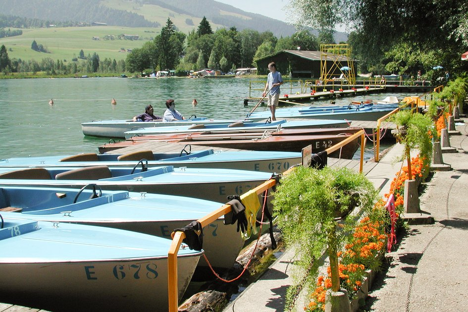 campingplatz walchsee familienurlaub kaiserwinkl camping tirol wasserski camping. Black Bedroom Furniture Sets. Home Design Ideas